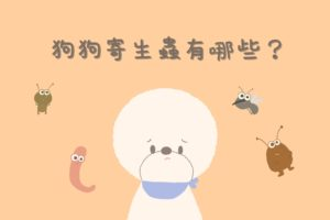 狗狗寄生蟲
