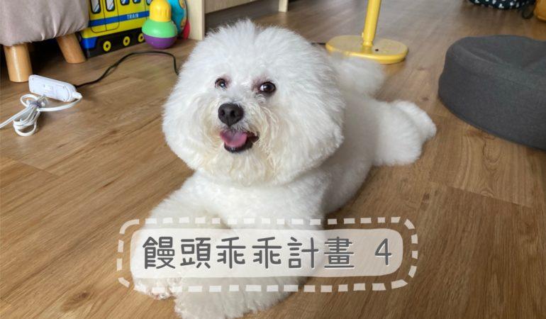 完美狗狗訓練師